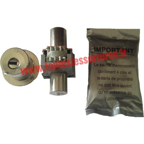 Bloc cylindre pour serrure carénée Vachette Radial NT